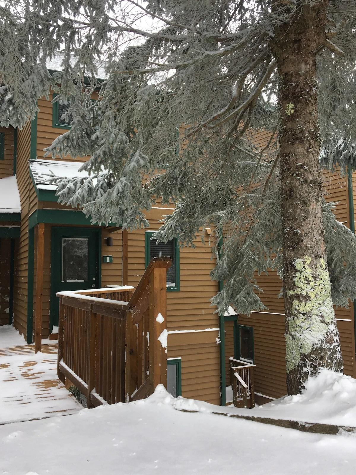 twin sleeper sofa rooms to go craigslist dallas bed 11 powderidge, snowshoe, wv - condominiums for rent in ...