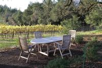 LAGUNA: Wine Country Views | Spa | Fireplace - Houses for ...