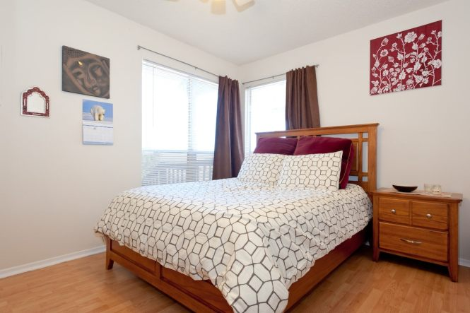 Bright Cheery 1 Bed In S Austin Apartments For Texas United States