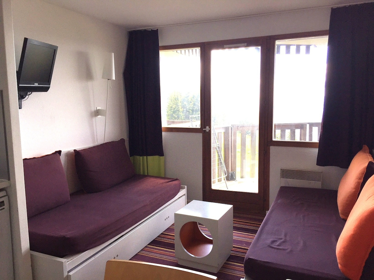 Airbnb Avoriaz Vacation Rentals Places To Stay