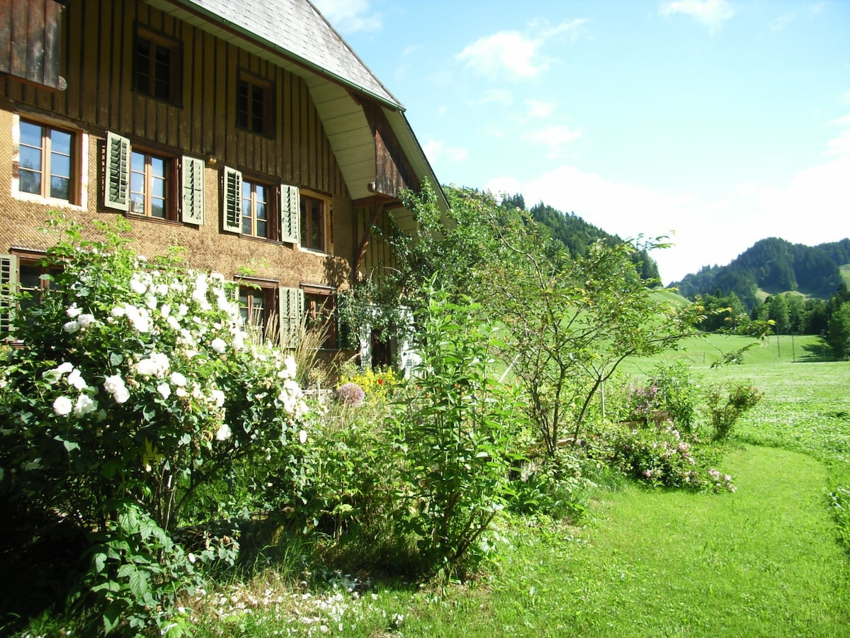 Neu renovierte gemtliche Wohnung im Emmental Trub  Apartments for Rent in Trub Canton of Bern