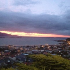 Sofa Bed Nz Wellington Domicil Alfred The Lookout Cosy & Close To Beach, Airport Zoo - Houses ...