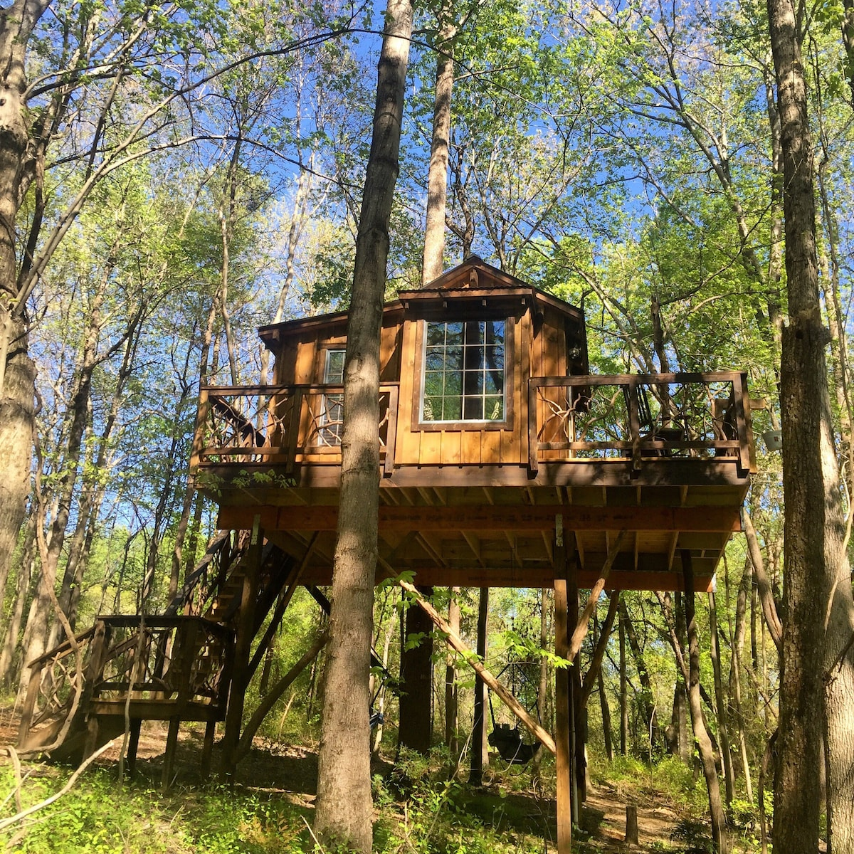 Cherry Treesort Miss Molly  Treehouses for Rent in