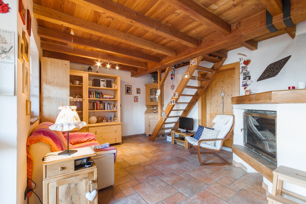 Baita Malga Fravort  Chalet in affitto a Roncegno