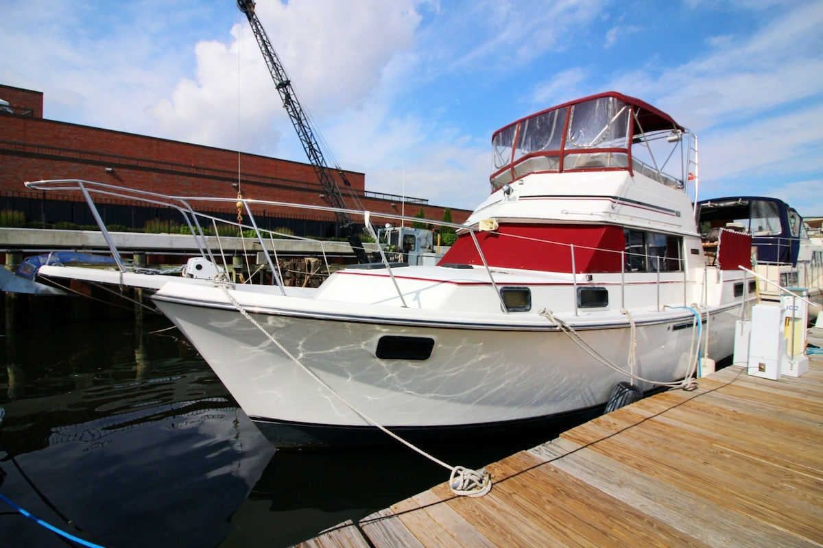 New Beginning 40ft Carver Motoryacht Boats For Rent In