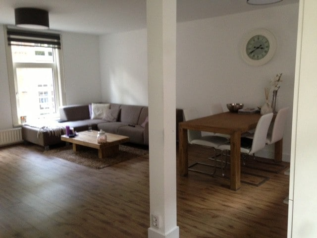 Mooi Groot Modern Appartement Condominiums For Rent In