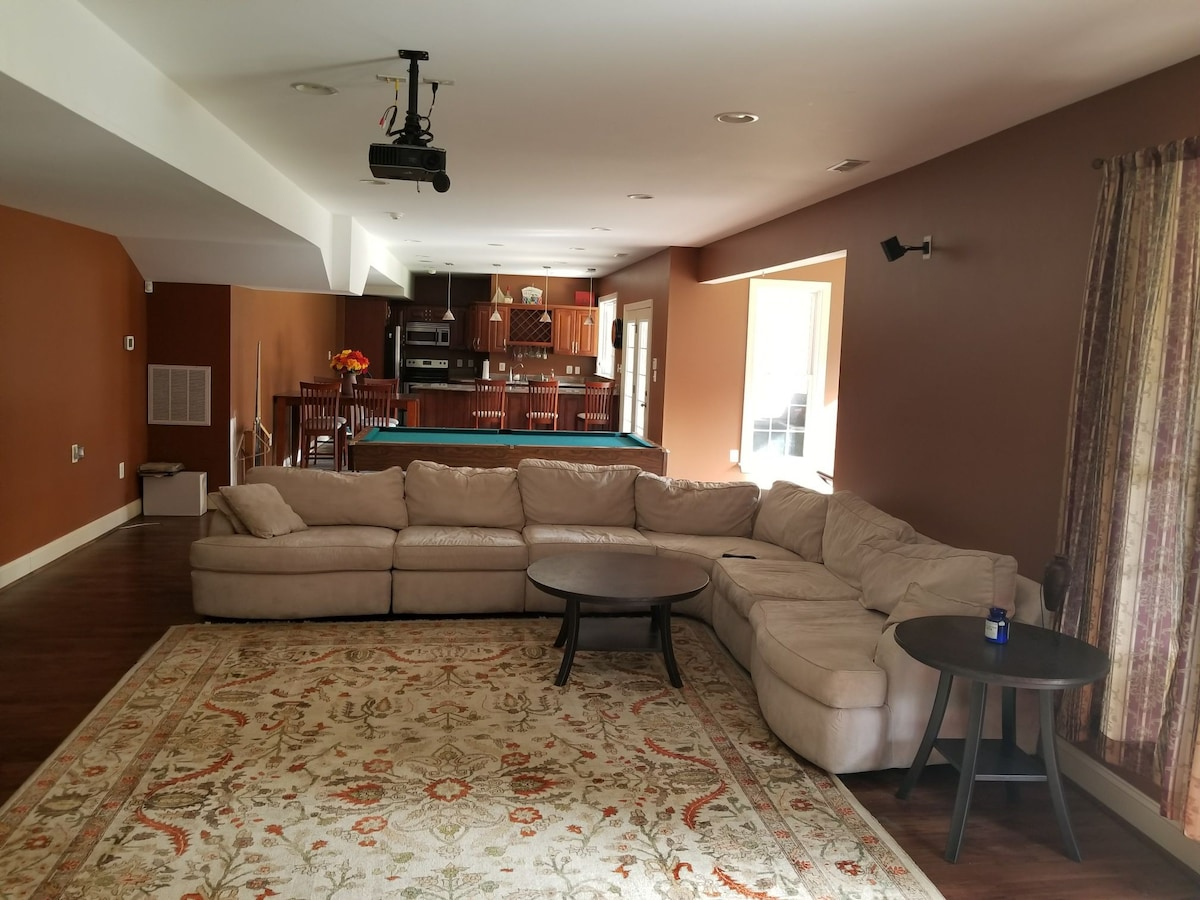 Large One Bedroom Basement Apartment Apartments For Rent