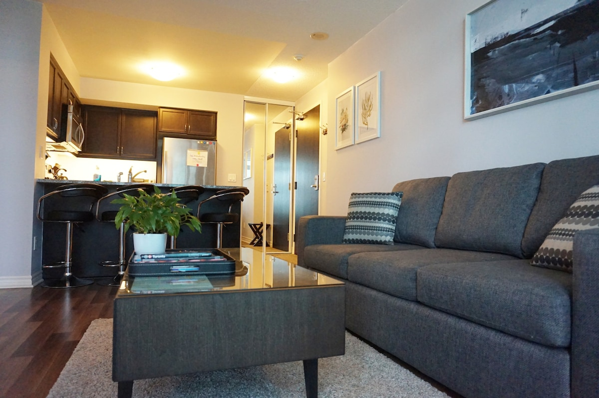 condo sofa beds toronto air bed lowest price spacious one-bedroom downtown - apartments for rent ...