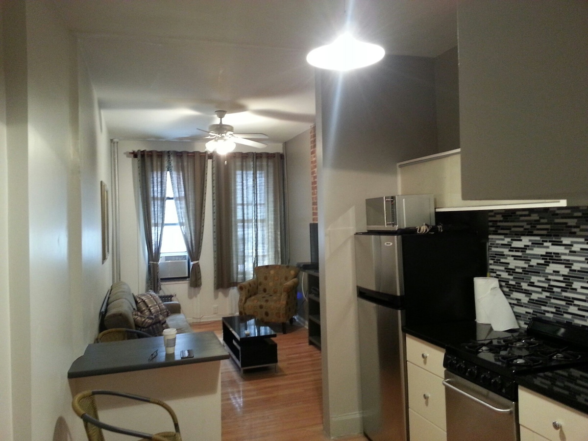 Huge New Modern Chic Reno 2 Bed Tsq  Apartments For Rent