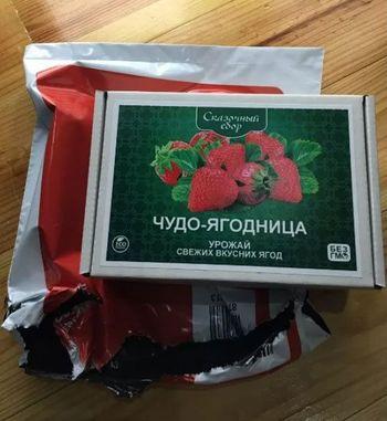 """Семена """"Чудо-ягодница - Сказочный сбор клубники"""""""