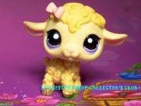 Other Collectable Toys - Littlest pet shop, Sheep - lamb ...