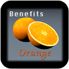 Rabanitos - Benefits Orange v1 artwork