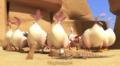 Oscars Oasis Episode Egg Race