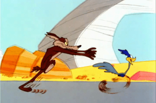 Looney Tunes Episode Shot And Bothered