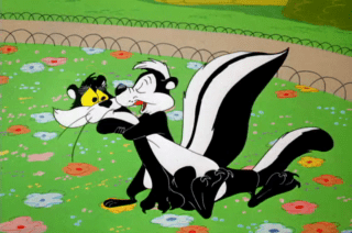 Looney Tunes Episode Wild Over You