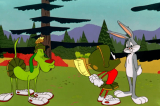 Looney Tunes Episode The Hasty Hare