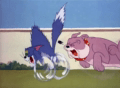 Tom And Jerry Episode That's My Pup!