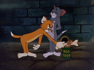 Tom And Jerry Episode Switchin' Kitten