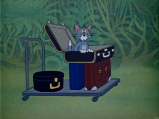 Tom And Jerry Episode Sorry Safari