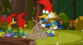 Woody Woodpecker Episode Scout'S Dishonor