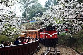 阿里山小火車 – 遊戲天堂
