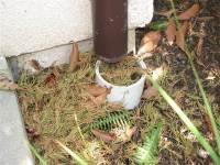 Storm Sewer Repair & Storm Drain Pipe Repairs