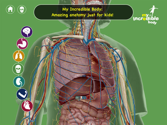 My Incredible Body - A Kid's App to Learn about the Human Body Screenshot