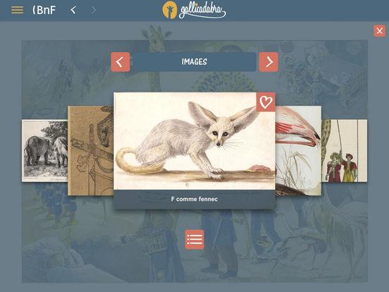 """Résultat de recherche d'images pour """"gallicadabra"""""""