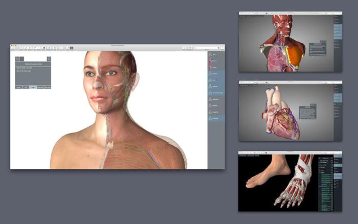 3_Essential_Anatomy_5.jpg