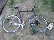 fahrradpolo augsburg (4)