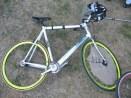 fahrradpolo singespeed