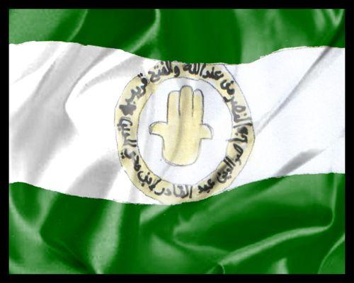 https://i0.wp.com/a21.idata.over-blog.com/500x400/1/15/79/46/Ouled/premier-embleme-algerie-djazair--drapeaux-flag-afrique.jpg