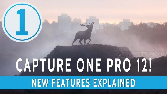 capture one pro 10 serial key