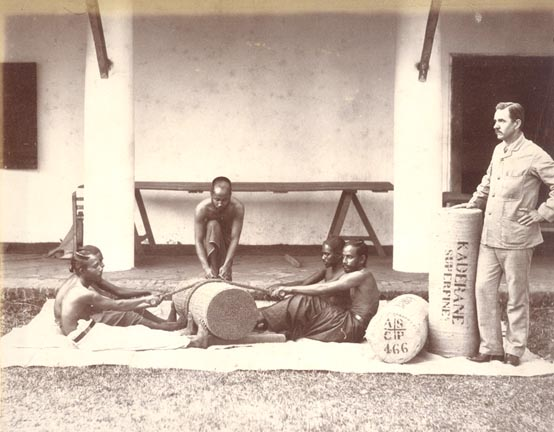 "Baling ""Ceylon Cinnamon"" during 1800s"
