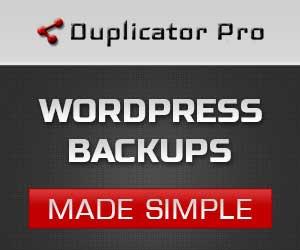 WordPress Backup på den sikre måde