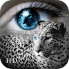 ZHI MING BAO - Adjust MyView HD - eyes' booths collection artwork