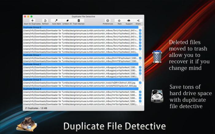 3_Duplicate_File_Detective.jpg