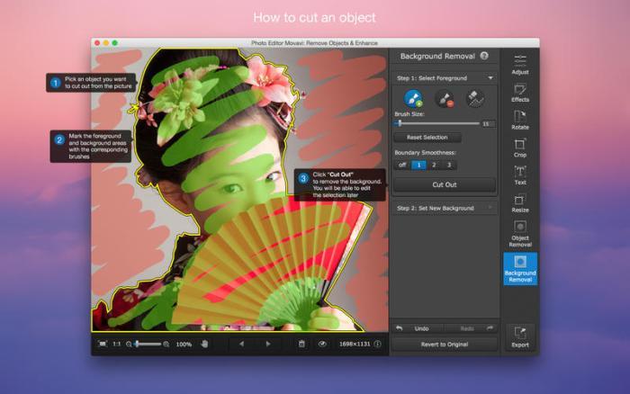 3_Photo_Editor_Movavi_Remove_Objects_Enhance.jpg