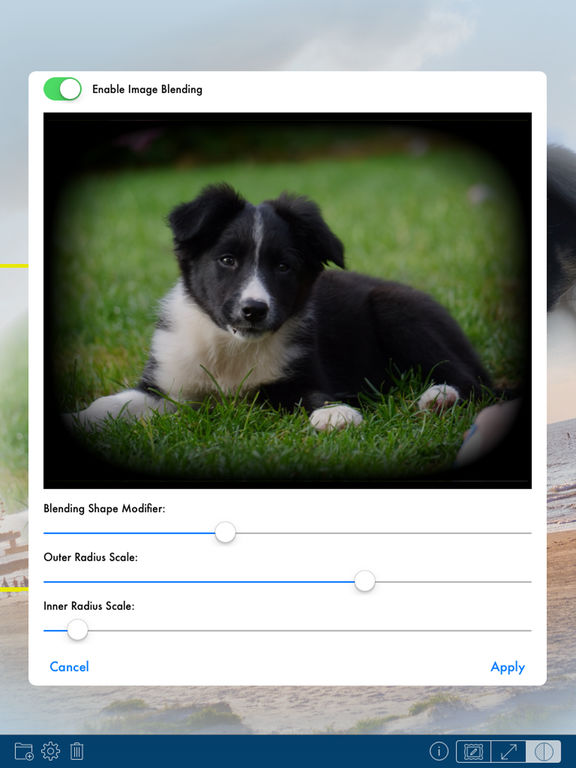 PhotoTangler - Best Collage Maker to Blend Photos iPad