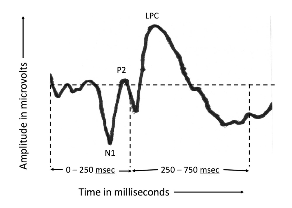 medium resolution of figure 1 an example of how a typical auditory event related potential aerp