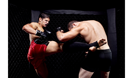 boxers and mixed martial