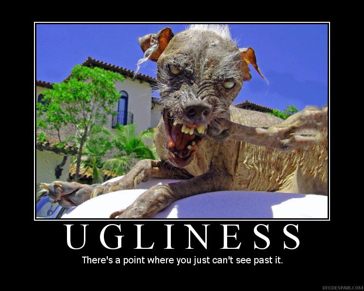 Ugliness - There's a point where you just can't see past it.