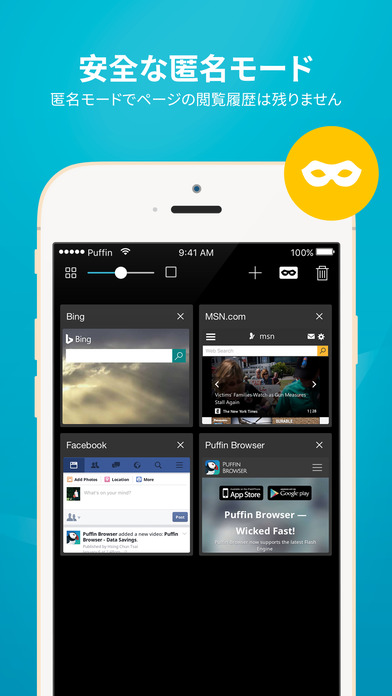 Puffin Web Browser Screenshot