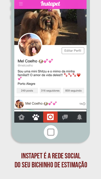 Screenshot do app Instapet - Rede Social pro seu Pet