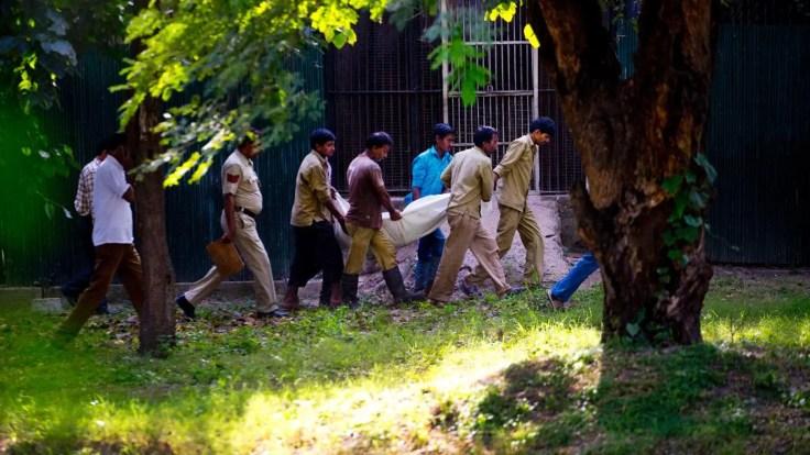 https://i0.wp.com/a57.foxnews.com/a57.foxnews.com/static.foxnews.com/foxnews.com/content/uploads/2018/09/640/320/1862/1048/India-Tiger-Attack-1.jpg?w=736&ssl=1