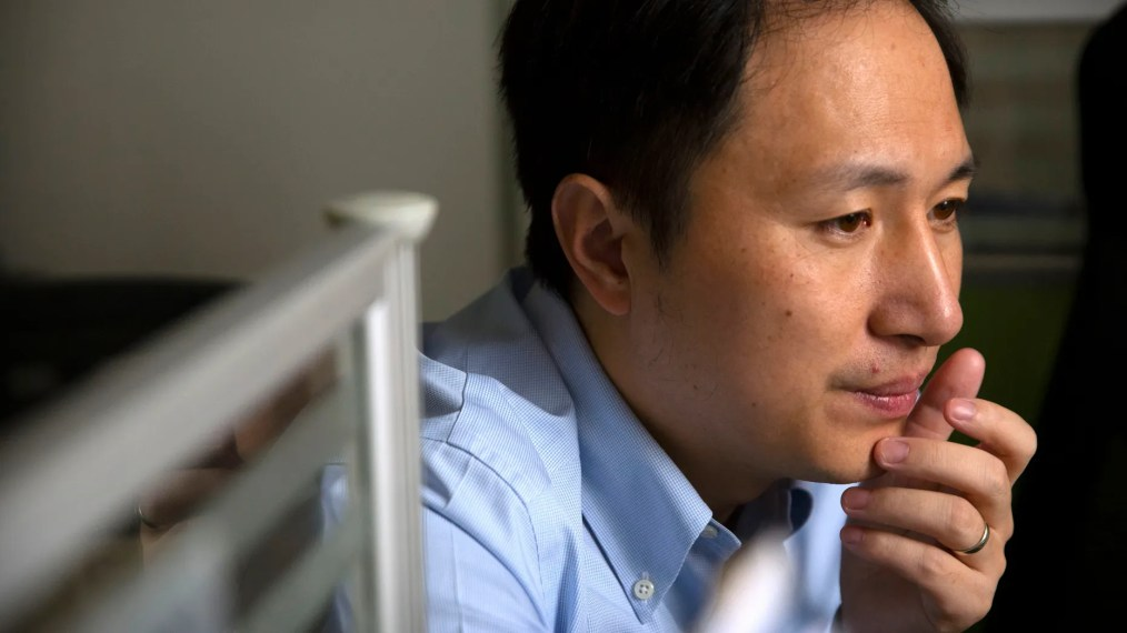 In this Oct. 10, 2018, photo, scientist He Jiankui looks at a computer screen while working at a lab in Shenzhen in southern China's Guandong province. China's government on Thursday, Nov. 29, 2018, ordered a halt to work by a medical team that claimed to have helped make the world's first gene-edited babies. (AP Photo/Mark Schiefelbein)