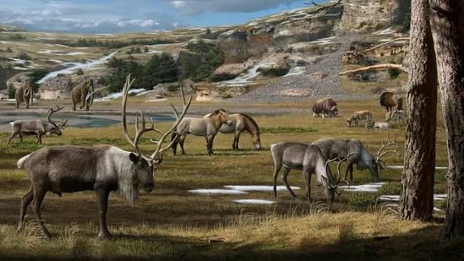 pleistocene-arctic