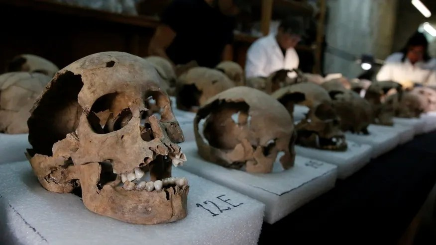 Biological anthropologists from the National Institute of Anthropology and History (INAH) examine skulls discovered at a site where more than 650 skulls caked in lime and thousands of fragments were found in the cylindrical edifice near Templo Mayor, one of the main temples in the Aztec capital Tenochtitlan, which later became Mexico City, Mexico June 30, 2017. Picture taken June 30, 2017. REUTERS/Henry Romero - RTS19E3D
