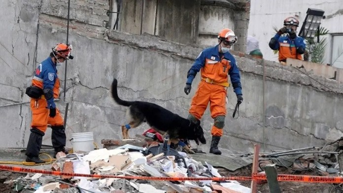 Rescue officials have deployed dogs to help them find bodies stuck in the rubble after a magnitude 7.1 earthquake rocked Mexico on Tuesday, Sept. 19, 2017.