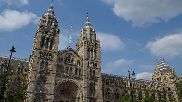 The Natural History Museum, a prominent landmark attraction which neighbours Imperial College in South Kensington, is seen in London, Britain, May 27, 2016. REUTERS/Toby Melville - D1AETHESURAA